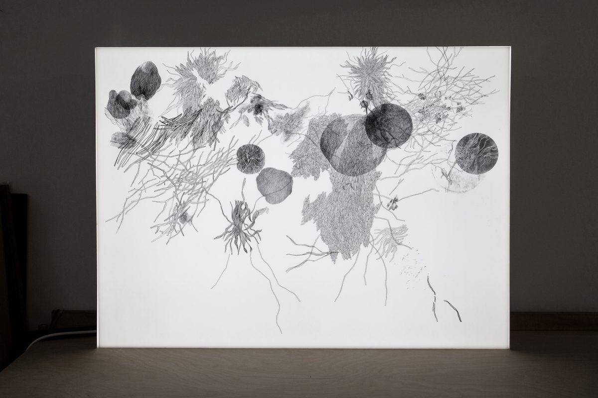 Plexiglas, 100 x 70 x 8 cm